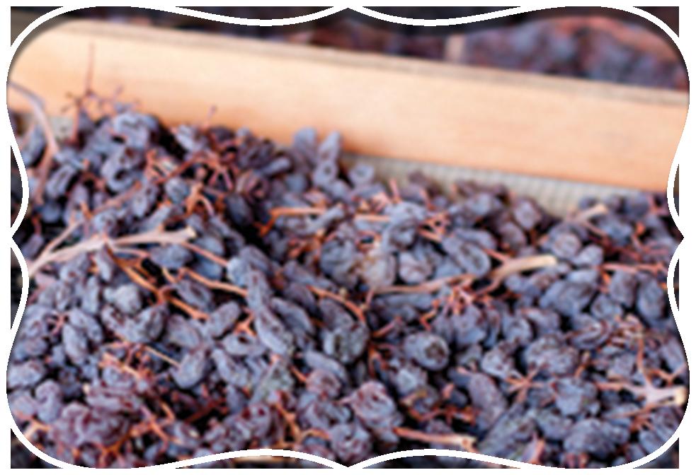 Home Raisins Design